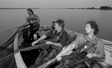 Fischfang auf der Schlei 1991 © Holger Rüdel