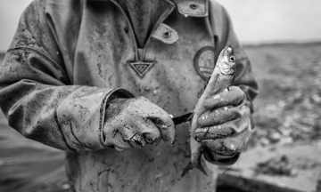 Matthias Nanz – ein Fischer an der Schlei © Holger Rüdel
