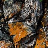 Felswand am Ufer des Judd Lake © Holger Rüdel