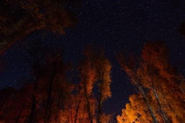 Sternenhimmel über dem Gros Ventre Campground © Holger Rüdel