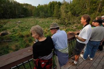 Besucher auf der Aussichtsplattform im Vince Shute Wildlife Sanctuary in Orr, Minnesota (USA) © Holger Rüdel