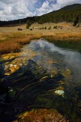 Yellowstone National Park Terrace Spring © Holger Rüdel