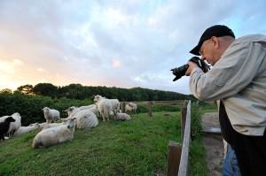 Jim Brandenburg mit Infrarot-Kamera in Haithabu bei Schleswig