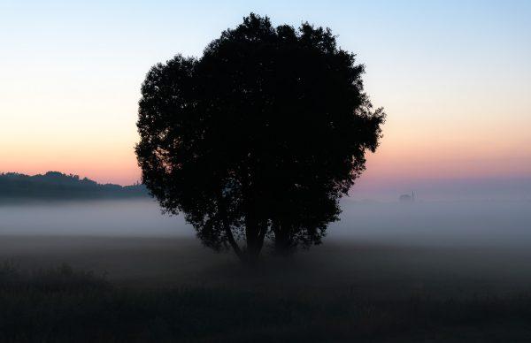 Abendlicher Nebel über dem Selker Noor nach einem heißen Sommertag im Juli 2018. Aus dem mystischen Dunst ragt nur die markante Spitze des Schleswiger Domturms hervor.