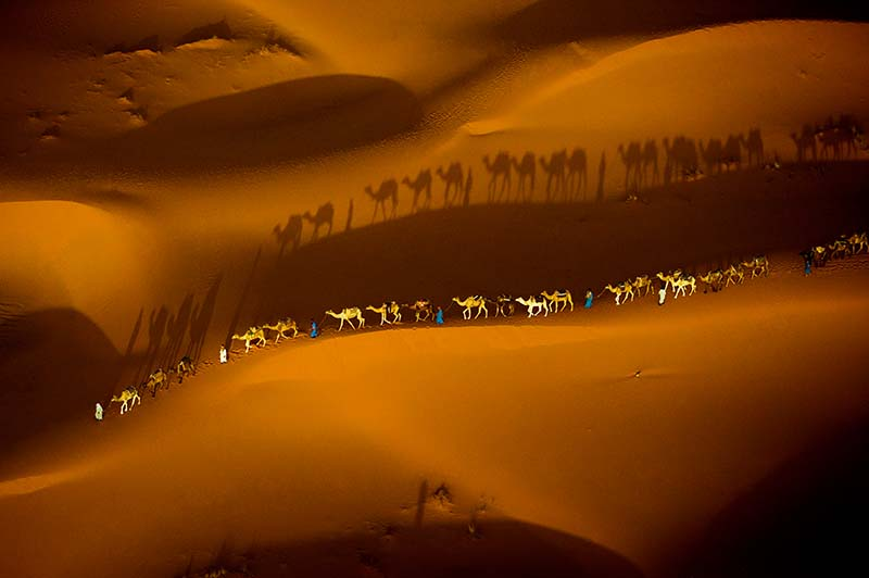 Aerial of camel train © Art Wolfe/ Art Wolfe Stock