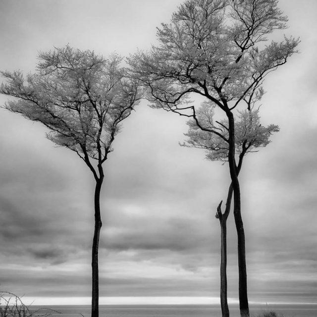 Darß – Ostseeküste im Infrarotfoto Teil 4