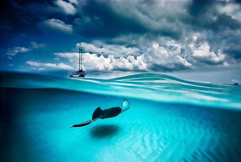 Stingray and Sailboat © David Doubilet