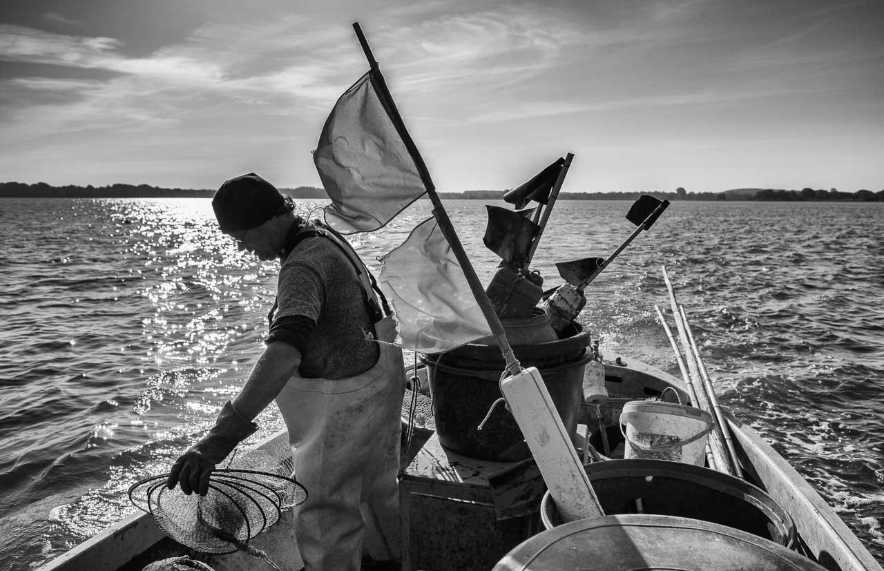 Matthias Nanz aus Schleswig ist einer der letzten Berufsfischer an der Schlei. Das Foto zeigt ihn auf seinem Boot frühmorgens Ende Mai beim Ausbringen einer Aalreuse auf der Großen Breite der Schlei.
