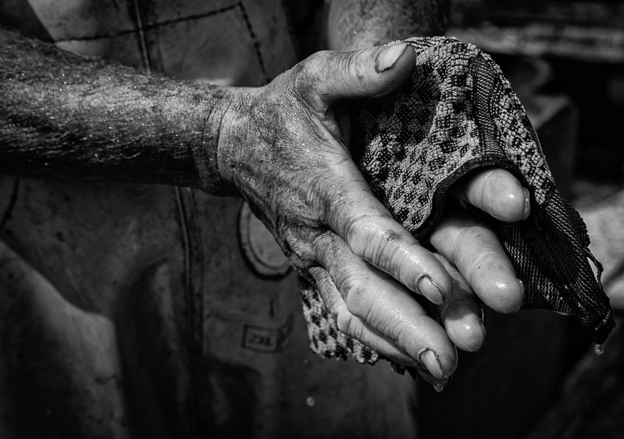 """Matthias Nanz aus Schleswig ist einer der letzten Berufsfischer an der Schlei. Mit seinem Boot """"Schle. 12"""" fährt er vom Liegeplatz in Missunde zu den Fanggründen in der Schlei. Das Säubern der Hände markiert das Ende des Arbeitstages."""