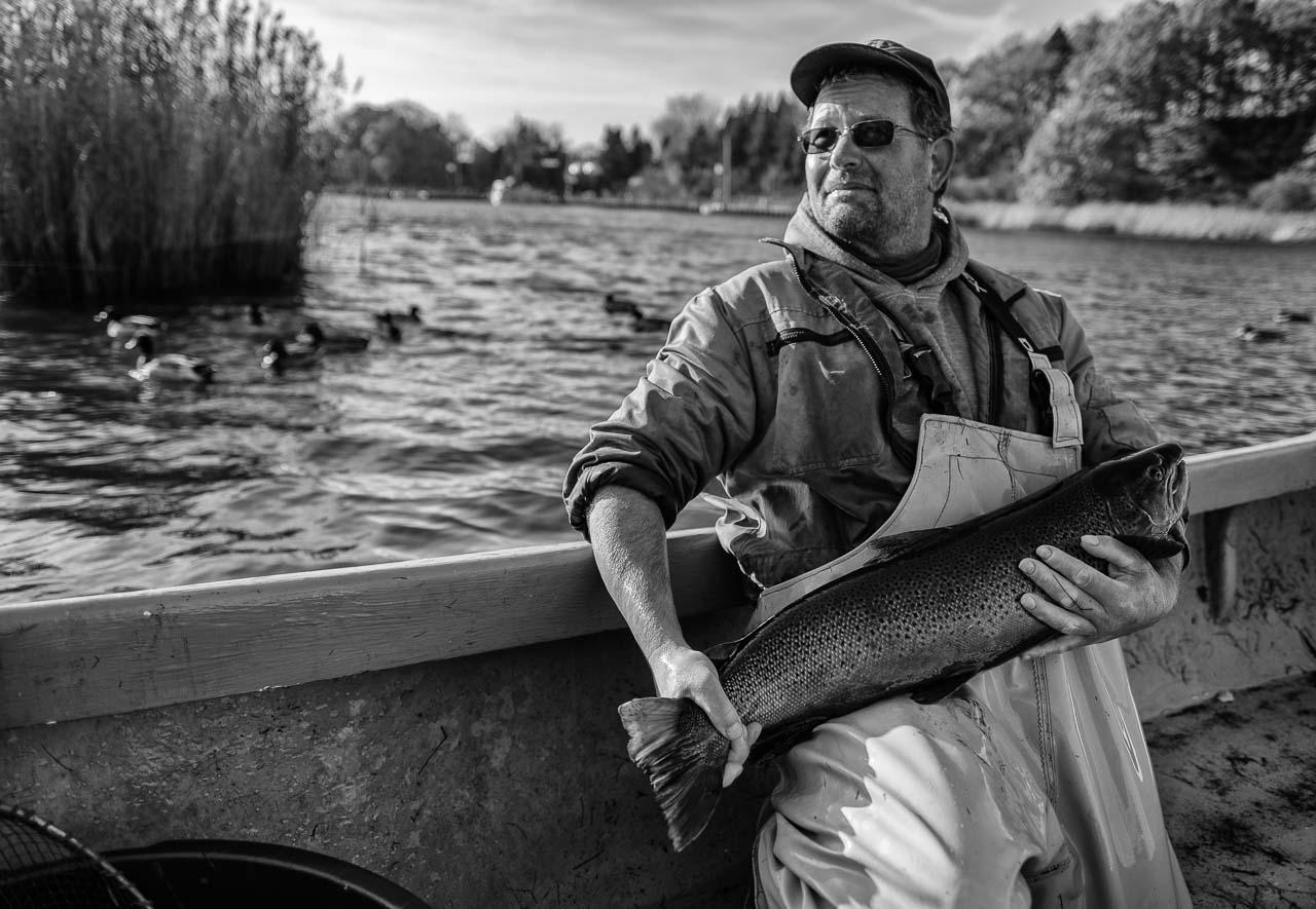 """Matthias Nanz aus Schleswig ist einer der letzten Berufsfischer an der Schlei. Mit seinem Boot fährt Matthias Nanz vom Liegeplatz in Missunde zu den Fanggründen in der Schlei. Der Herbst ist die Zeit, in der wie hier im November Raubfische, Heringe und Flundern gefangen werden. Manchmal gehen auch Meerforellen ins Netz. Diese große Meerforelle hatte allerdings schon ihr Laichkleid angelegt und wurde nach dem kurzen """"Fototermin"""" schonend zurückgesetzt."""