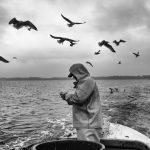 Matthias Nanz - hier im Dezember 2019 beim Heringsfang - ist einer der letzten Fischer vom Holm aus Schleswig an der Schlei.