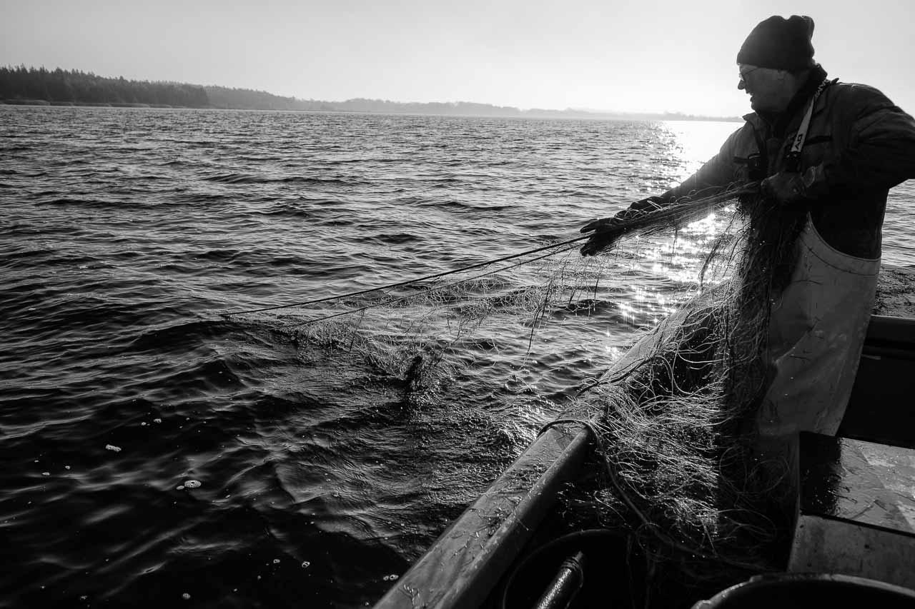 Matthias Nanz aus Schleswig ist einer der letzten Berufsfischer an der Schlei. Mit seinem Boot fährt Matthias Nanz vom Liegeplatz in Missunde zu den Fanggründen in der Schlei. Der Herbst ist die Zeit, in der wie hier an einem kalten Tag Mitte November Raubfische, Heringe und Flundern (Struvbutt) gefangen werden.