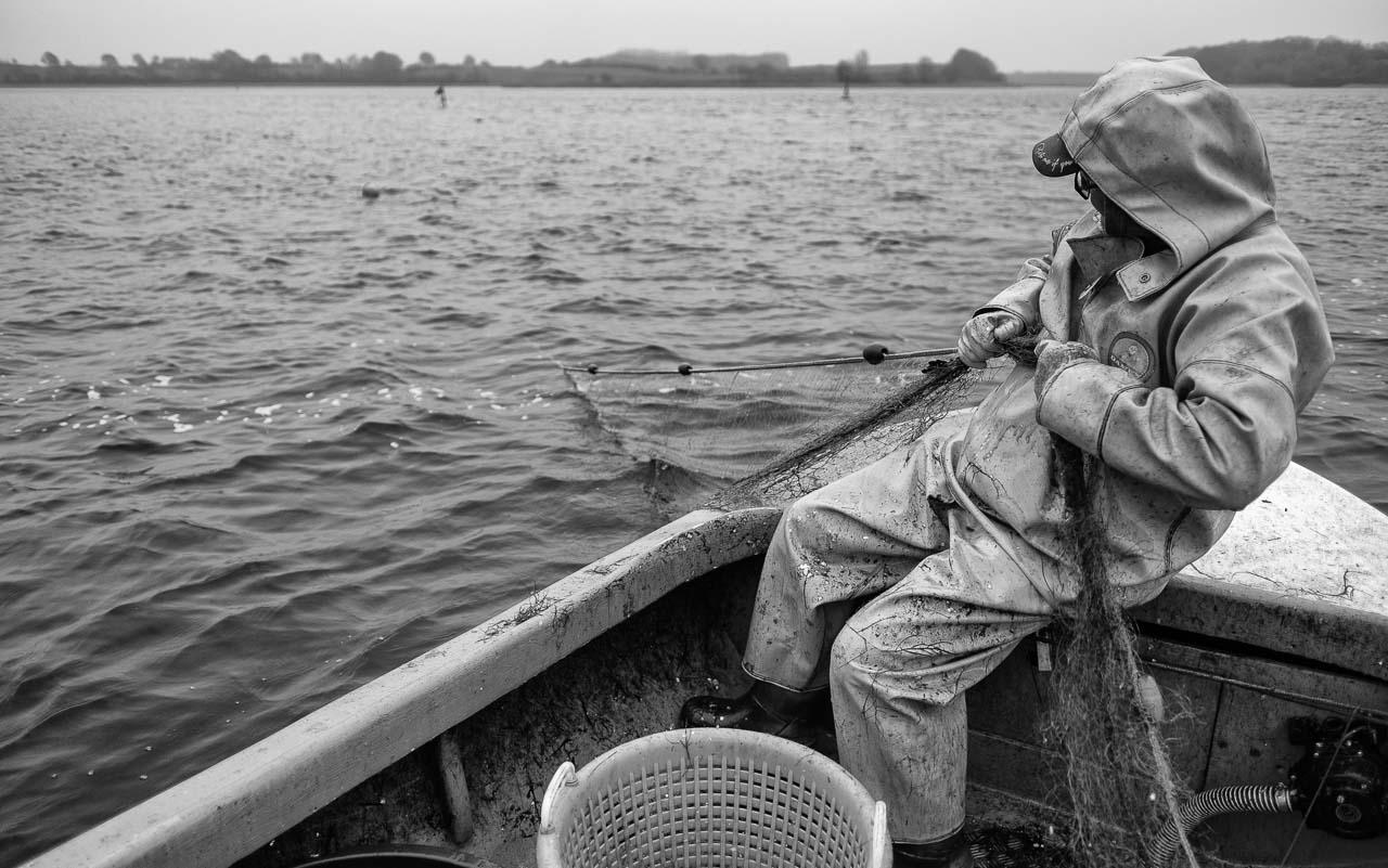 Matthias Nanz aus Schleswig ist einer der letzten Berufsfischer an der Schlei. Mit seinem Boot fährt Matthias Nanz vom Liegeplatz in Missunde zu den Fanggründen in der Schlei. An diesem kalten Fangtag Mitte Dezember gingen vor allem Heringe ins Netz. Das Einholen erfolgt ohne Motorhilfe und ist eine große Kraftanstrengung.