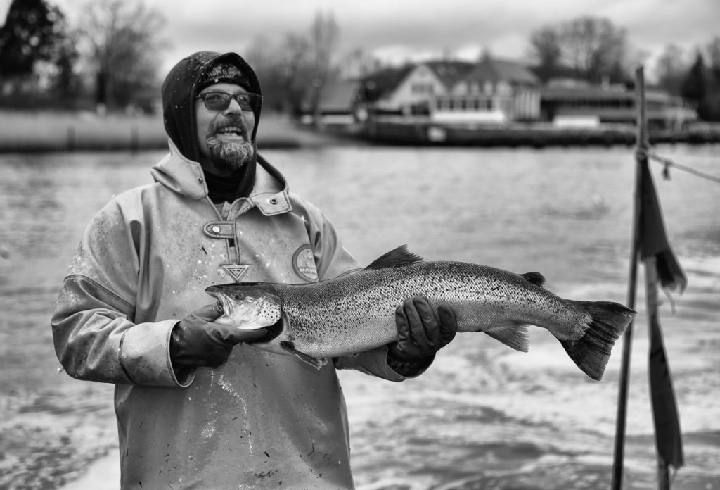 Matthias Nanz aus Schleswig ist einer der letzten Berufsfischer an der Schlei. Mit seinem Boot fährt er vom Liegeplatz in Missunde zu den Fanggründen in der Schlei. Im zeitigen Frühjahr werden vor allem Heringe gefangen. Manchmal gehen auch Meerforellen ins Netz wie dieses große Exemplar Ende März.