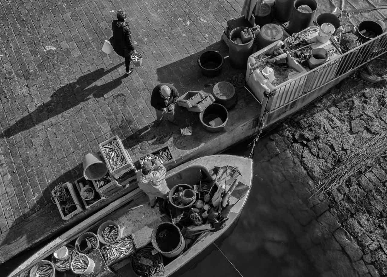 Matthias Nanz aus Schleswig ist einer der letzten Berufsfischer an der Schlei. Mit seinem Boot fährt er vom Liegeplatz in Missunde zu den Fanggründen in der Schlei. Im zeitigen Frühjahr werden vor allem Heringe gefangen. Ein Teil des Fangs geht direkt nach der Landung an Privatkunden.
