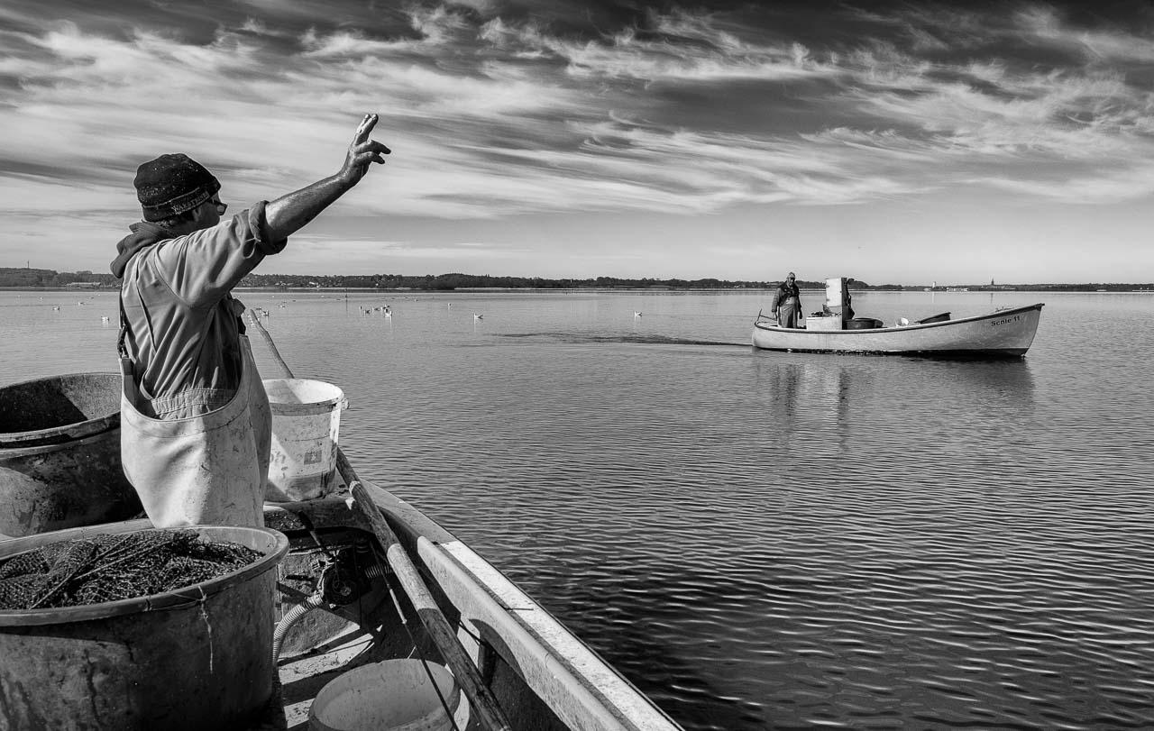 Matthias Nanz aus Schleswig ist einer der letzten Berufsfischer an der Schlei. Bei dieser Fangfahrt Ende April auf der Großen Breite der Schlei begegnete er seinem Kollegen Jörn Ross, dem Ältermann der Holmer Fischerzunft.