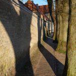 Spiel mit Licht und Schatten: Frühmorgens in der Fischersiedlung Holm in Schleswig, hier in der Allee beim St.-Johannis-Kloster. Die Aufnahme entstand mit einer Fuifilm GFX 100S.