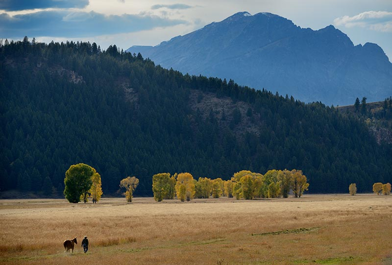 Grand Teton National Park farmer with horse © Holger Rüdel