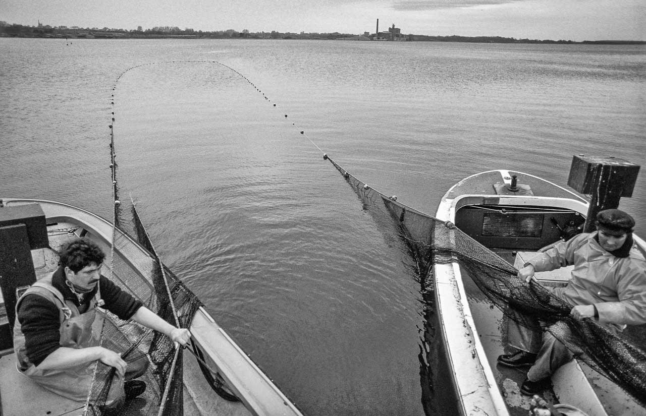 Der Fischer Harald Ross (im rechten Boot) und Sohn Jörn beim Einholen eines Wadennetzes 1989 auf der Kleinen Breite der Schlei. Im Hintergrund ist die später abgerissene Schleswiger Zuckerfabrik zu erkennen.