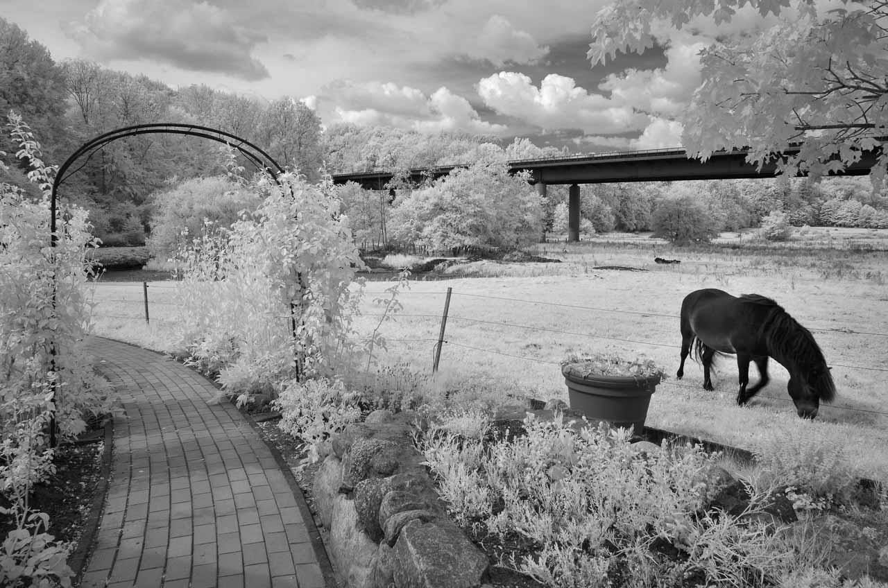 Das als idyllisch beschriebene Hasselholmer Tal im Norden der Stadt Schleswig wird von einer Straßenbrücke radikal durchschnitten. Im infraroten Licht wirkt die schon bei normalem Licht etwas bizarre Szene mit dem romantischen Rankbogen eines Hotelgartens im Vordergrund und der kühlen Brückenkonstruktion im Hintergrund definitiv wie ein Motiv aus einer surrealen Welt.
