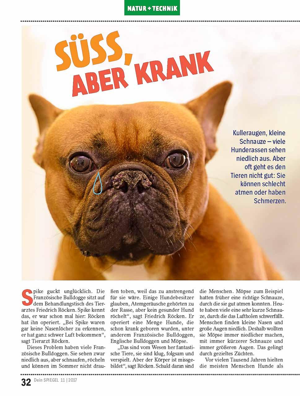 """Titelseite des Artikels in """"Dein Spiegel"""", Ausgabe 11/2017"""