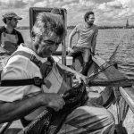 Am 8. Juli 2021 besuchte der schleswig-holsteinische Umwelt- und Fischereiminister Jan Philipp Albrecht die Schleswiger Fischersiedlung Holm. Als Gast im Boot von Jörn Ross, 1. Ältermann der Holmer Fischerzunft, und dessen Söhnen Nils und Christian informierte sich der Minister über die Sorgen der Schleifischer.