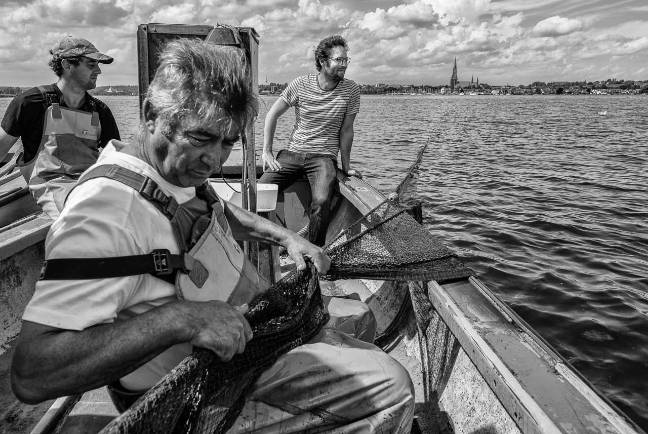 Jan Philipp Albrecht bei den Fischern vom Holm