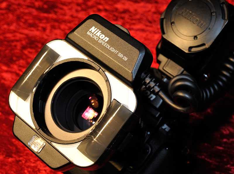 Nikon Makroblitzgerät SB-29 mit Graufilter-Modifizierung © Holger Rüdel