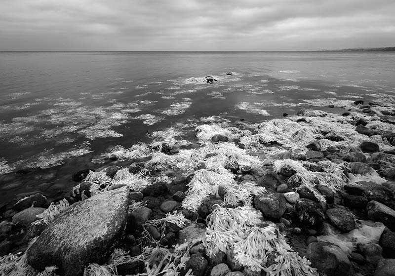Ostseeküste auf Als/Alsen © Holger Rüdel www.holger-ruedel.de