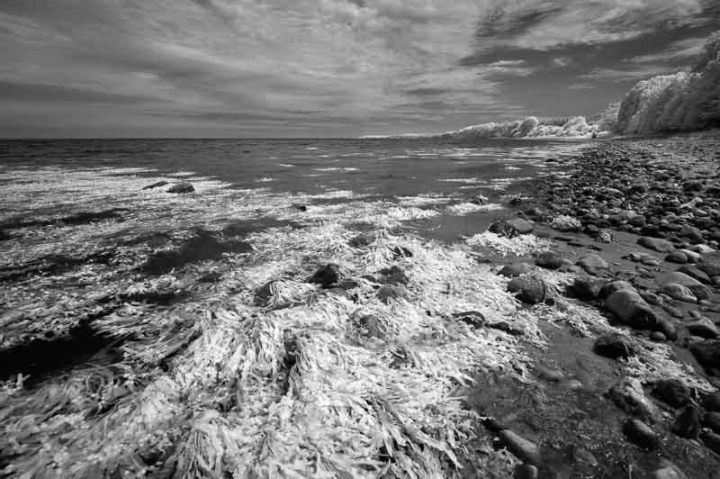 Insel Als/Alsen: Ostseeküste im infraroten Licht Teil 2