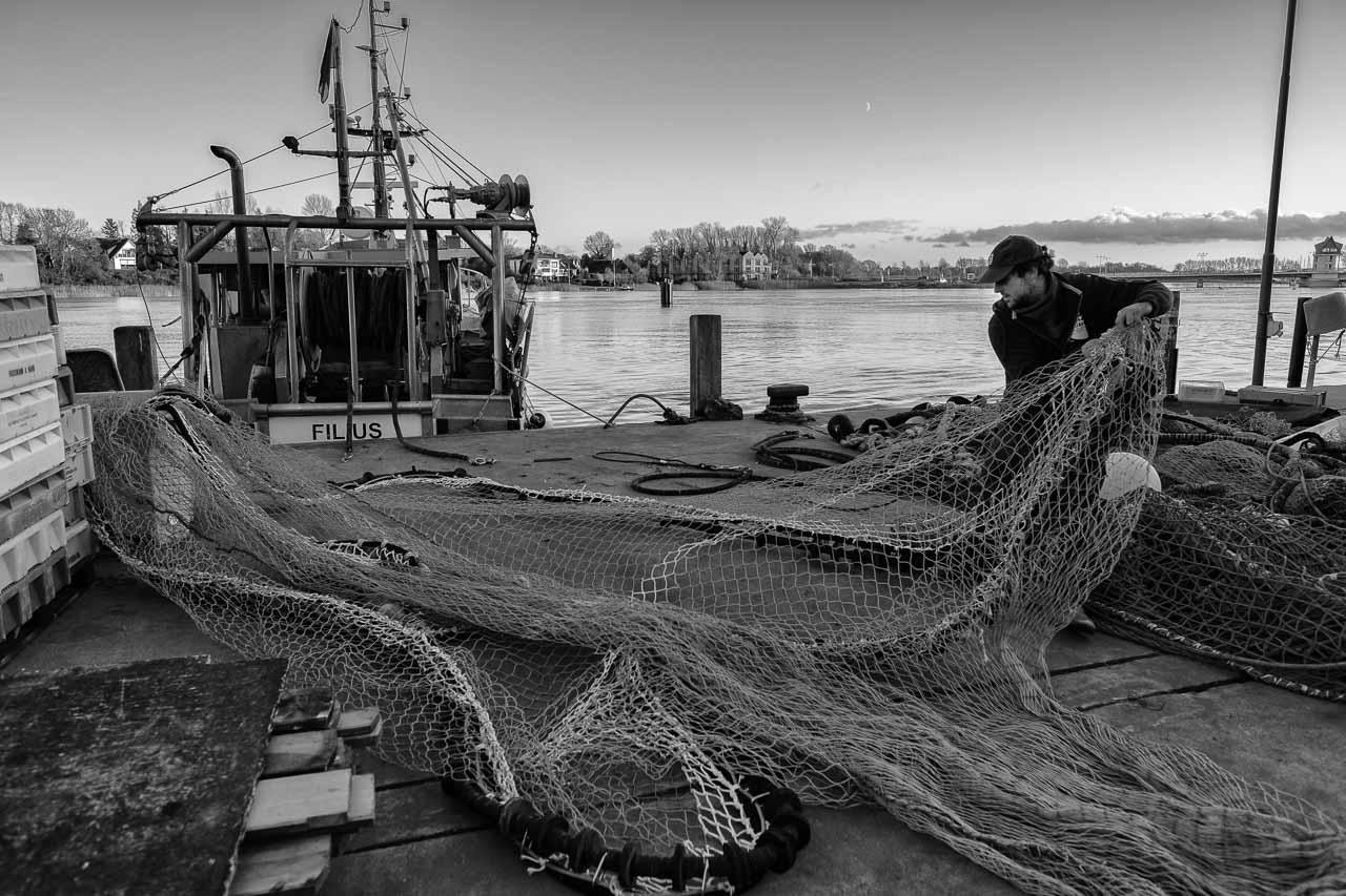 """Christian Ross ist der jüngste unter den Fischern vom Holm in Schleswig an der Schlei. Er fischt am liebsten allein auf dem Kutter """"Schle 26"""" auf der Ostsee. Hier montiert Christian Ross ein neues Schleppnetz am Liegeplatz des Schiffes im Hafen von Kappeln."""