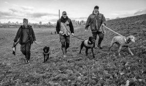 Szenen einer Jagd: Bei einer Bewegungsjagd werden etliche Kilometer zurückgelegt. Die Aufnahme der drei Jäger mit ihren Hunden entstand in Schleswig-Holstein im Dezember 2018.