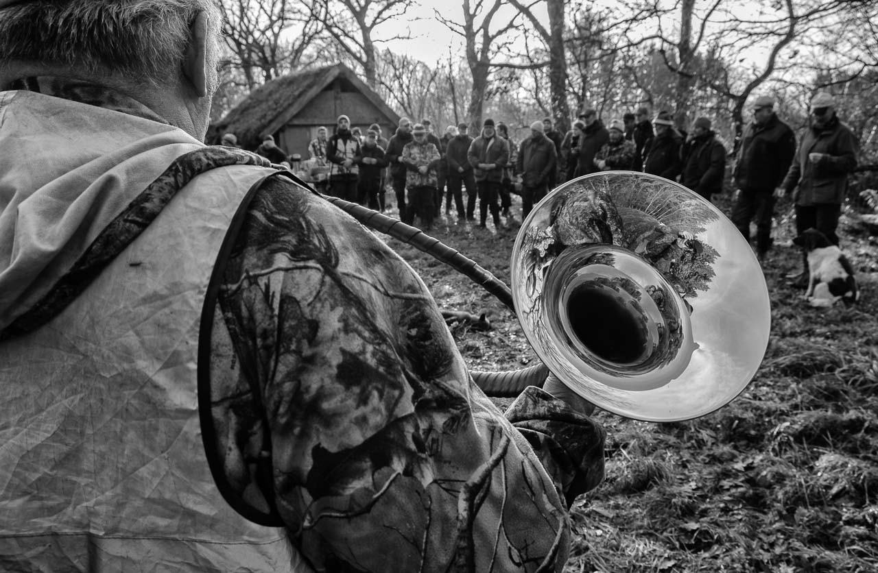 Szenen einer Jagd: Das Halali stellt das ritualisierte Ende der Jagd dar, bei der sich alle Beteiligten am Streckenplatz versammeln. Die Schützen werden geehrt und die erlegten Wildarten mit den entsprechenden Signalen verblasen. Das letzte Signal in diesem Ritual ist das Halali. Die Aufnahme entstand in Schleswig-Holstein im Dezember 2018.