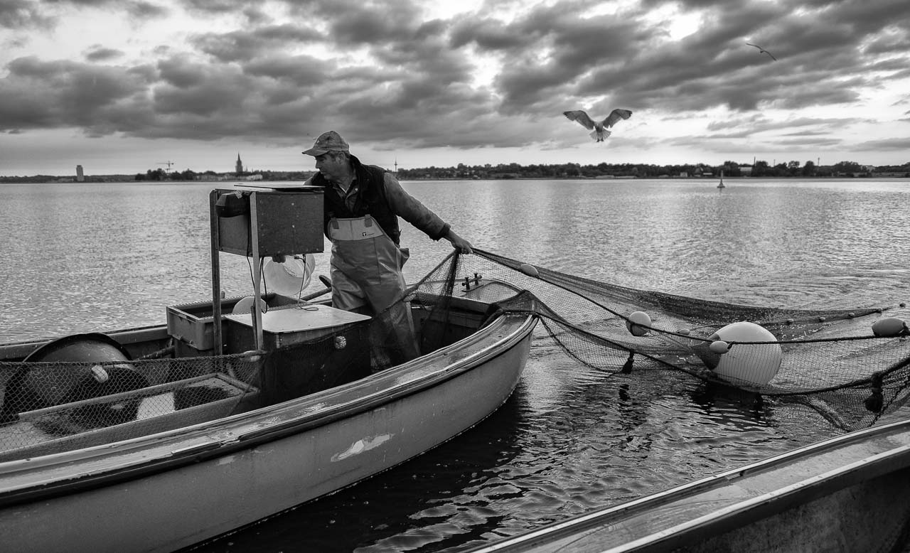 Mit Fischer Ross auf der Schlei. Die Wade